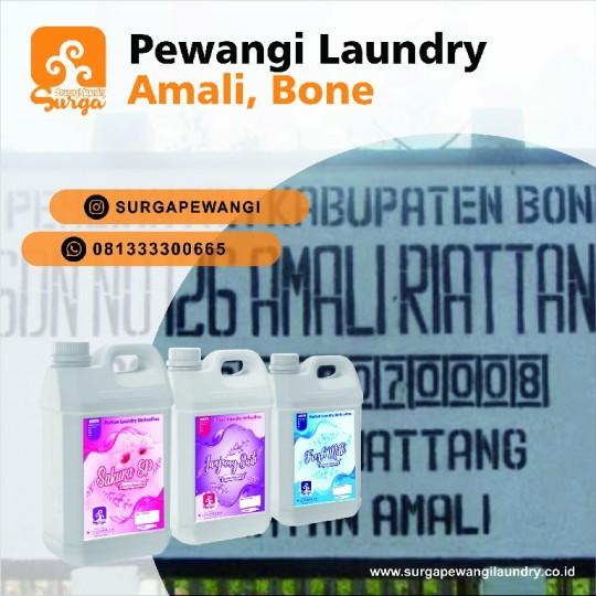 PARFUM LAUNDRY AMALI BONE
