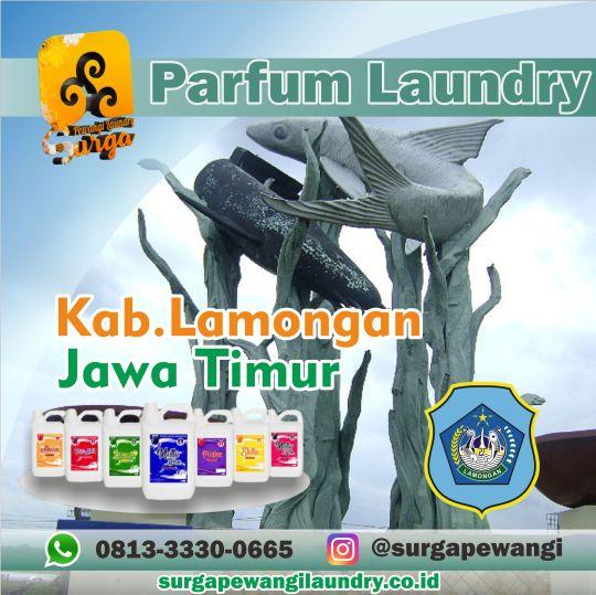 Parfum Laundry Kabupaten Lamongan, Jawa Timur