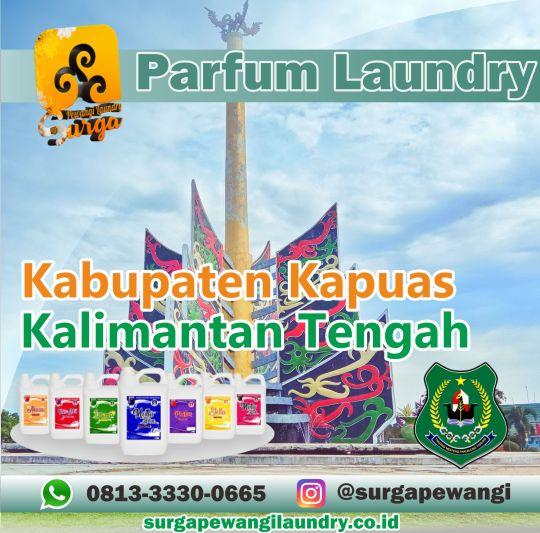Parfum Laundry Kabupaten Kapuas, Kalimantan Tengah