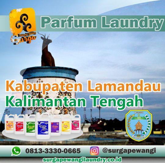 Parfum Laundry Kabupaten Lamandau, Kalimantan Tengah